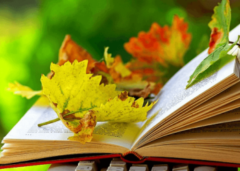 З 30 вересня по 30 жовтня 2019 року у коледжі проходить Місячник бібліотеки!